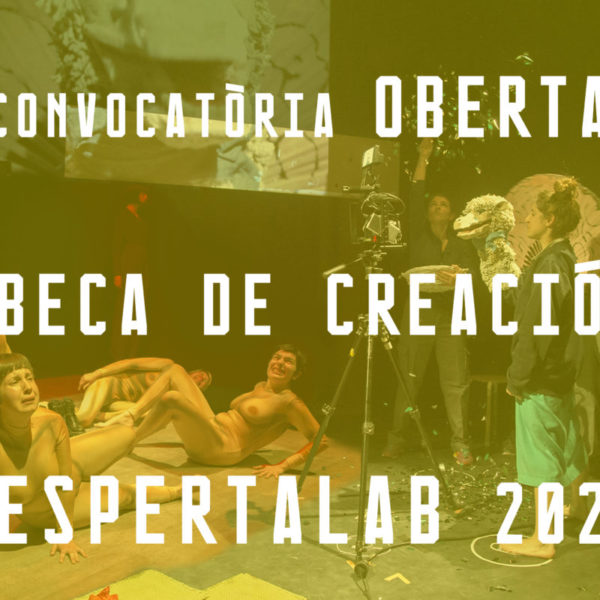 Convocatoria DespertaLab 2020